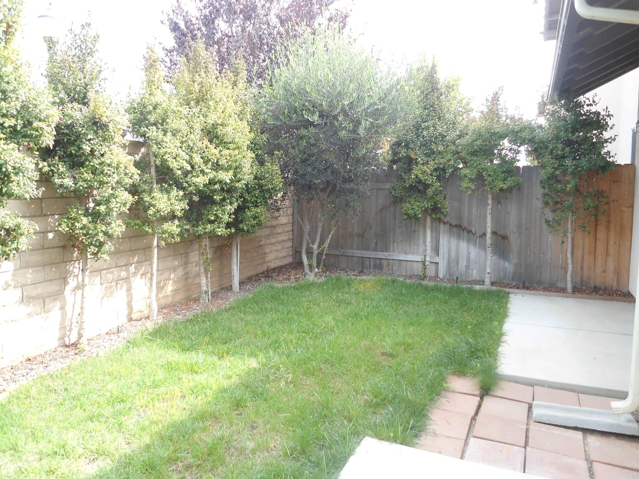 Backyard 1.3