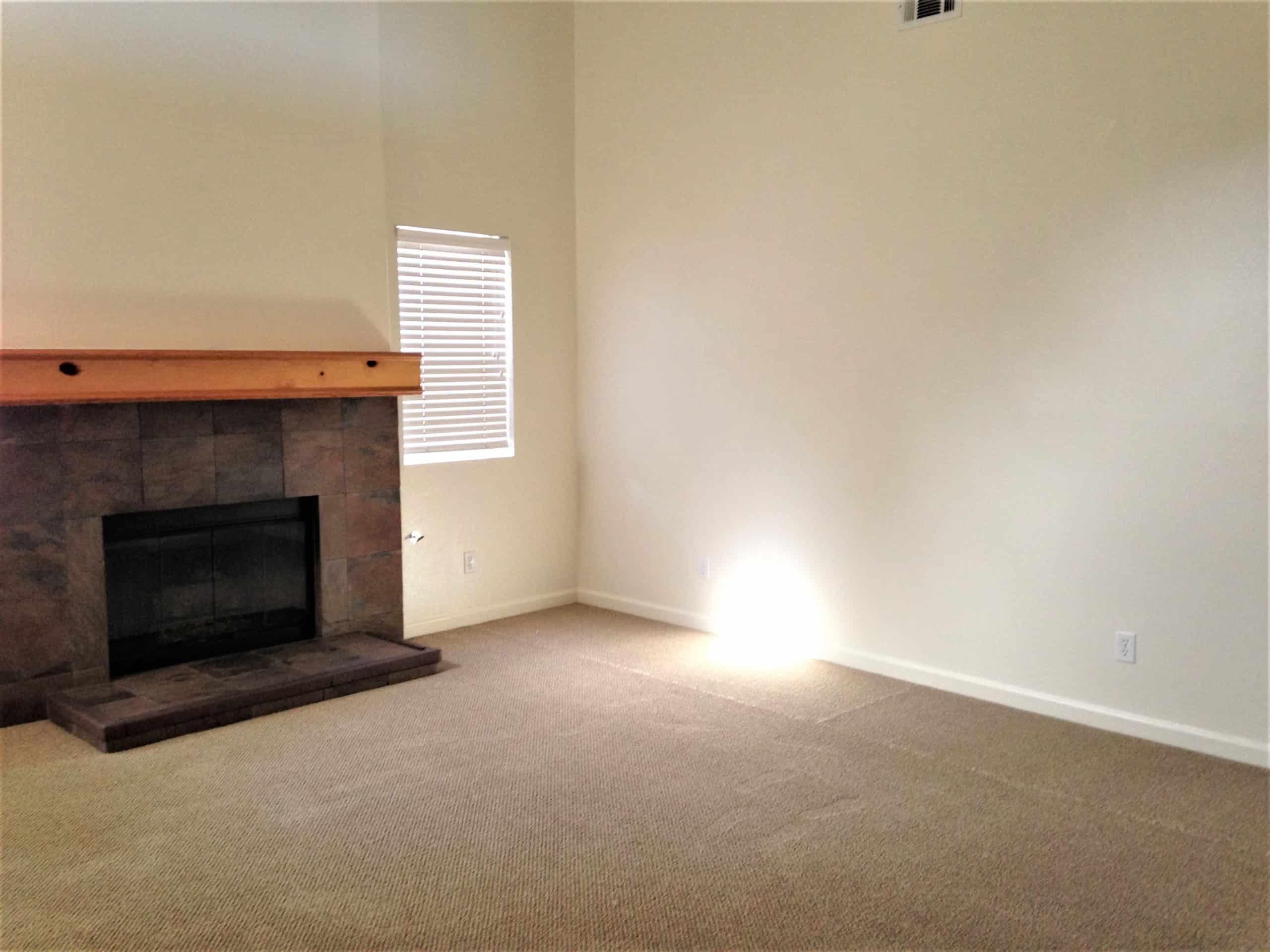 Living Room - Fireplace