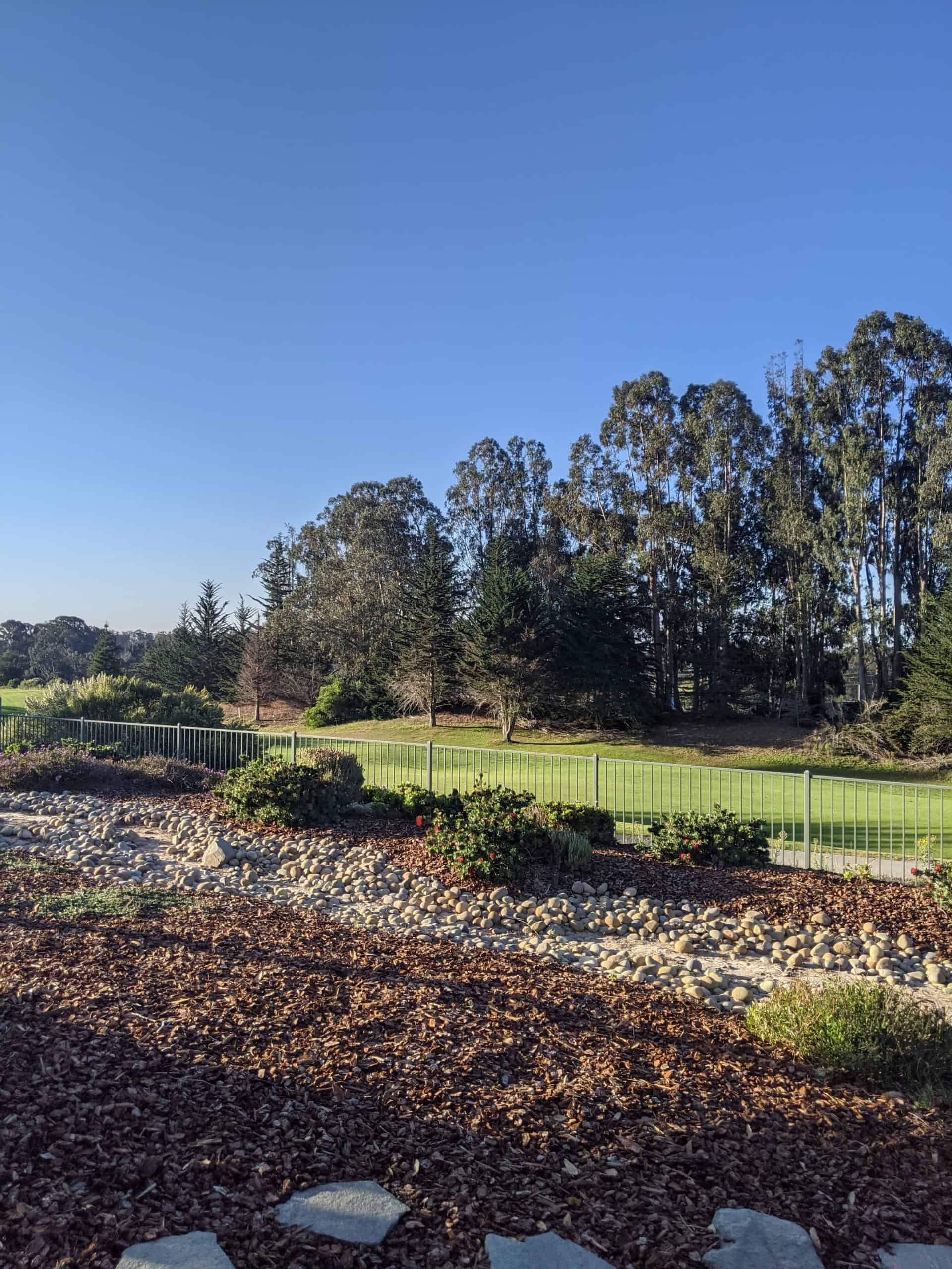 Backyard overlook green 4